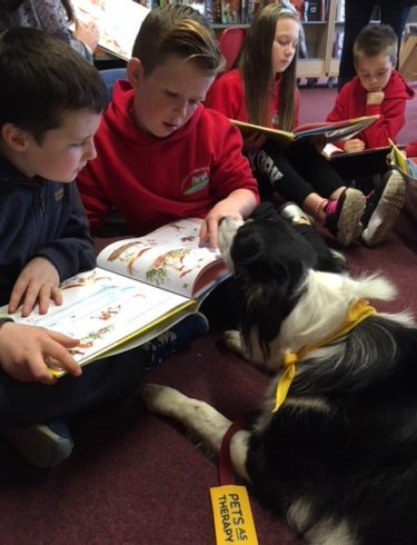 reading dog - Townhill Community School & Swansea Library Service